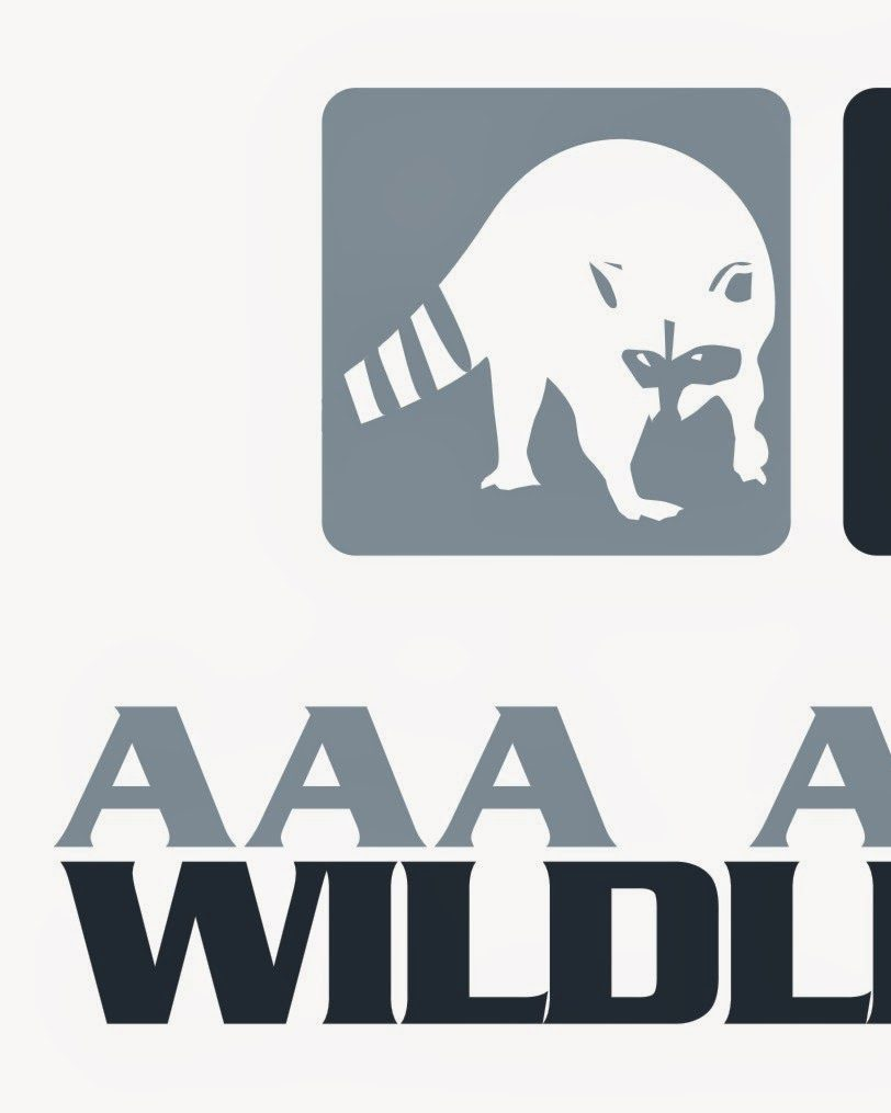 WILDLIFE CONTROL LOGO - AAA AFFORDABLE WILDLIFE CONTROL